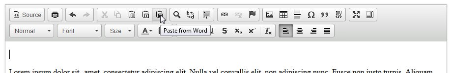 wysiwyg - paste from microsoft word